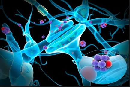 Nanotherapy Photo