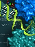 Bio Physics and Structural Biology Photo