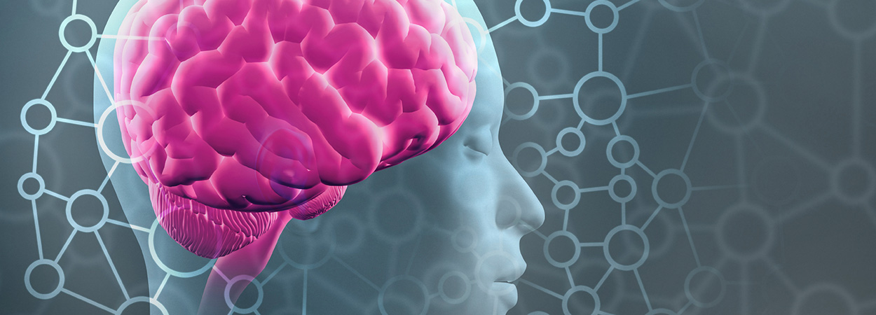 Neurotoxicology and Computational Neuroscience Photo