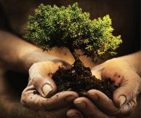 Environmental Science Photo