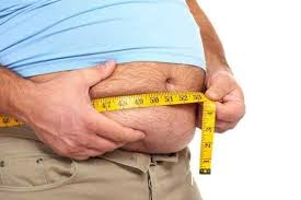 Obesity in Adults Photo
