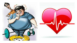 Cardiovascular diseases and Obesity Photo