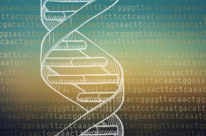Bacterial Genomics Photo