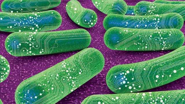 Synthetic Biology Photo