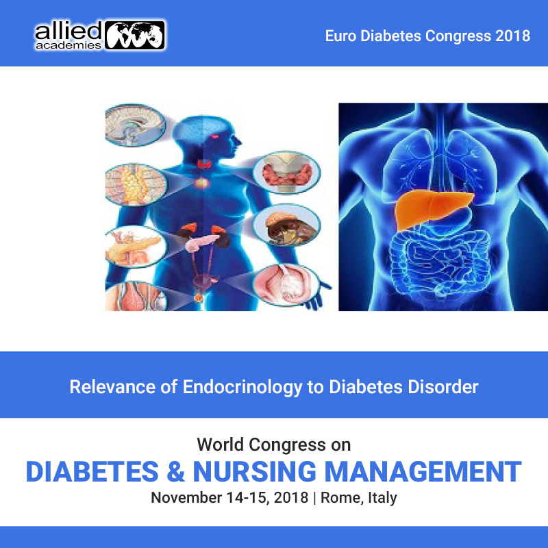 Relevance Of Endocrinology To Diabetes Disorder Photo