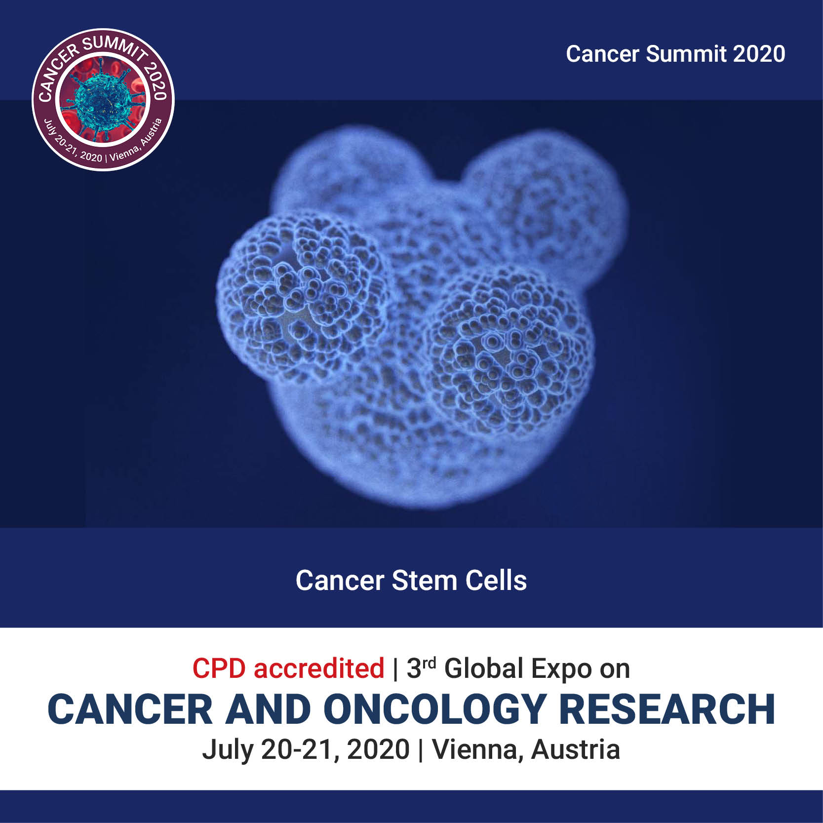 Cancer stem cells	 Photo