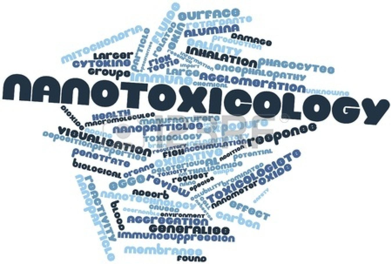 Environmental toxicity and risks of Nanomaterials Photo