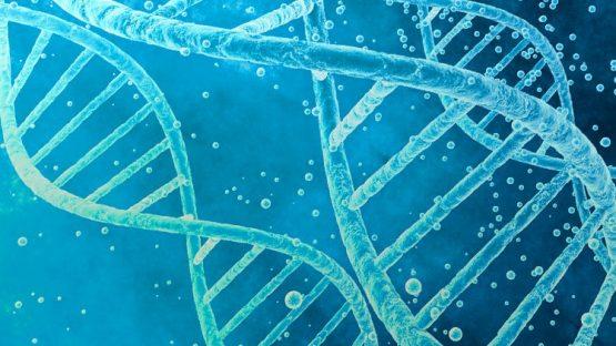 molecular diagnostics medical microbiology conference medical