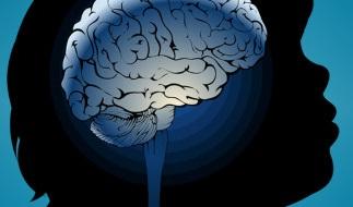 Pediatric neurology  Photo