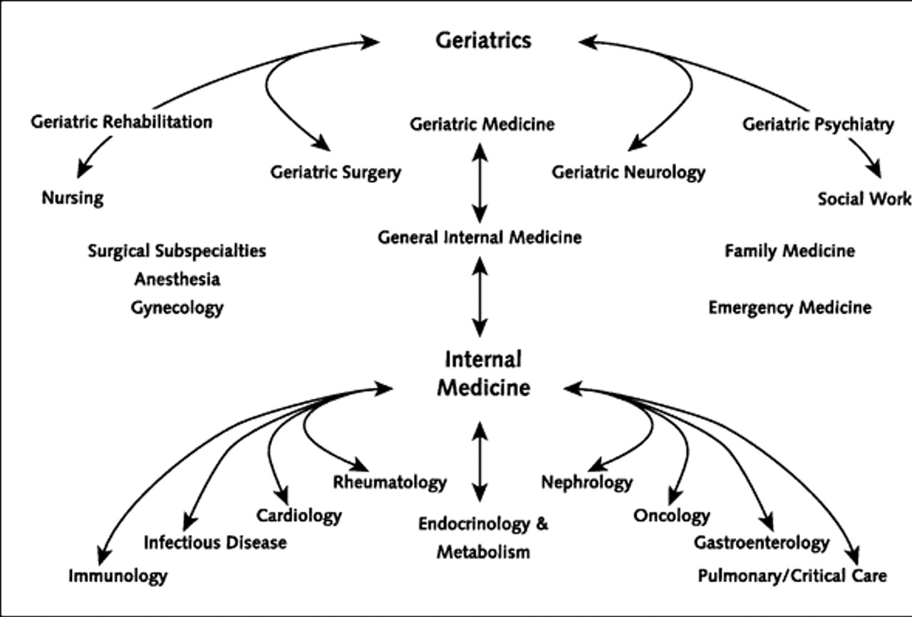 Geriatrics and Gerontology Photo