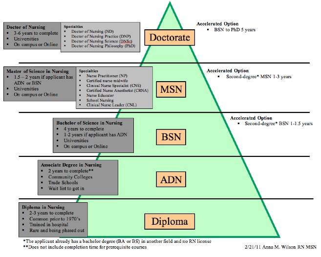 Types of Nursing Photo