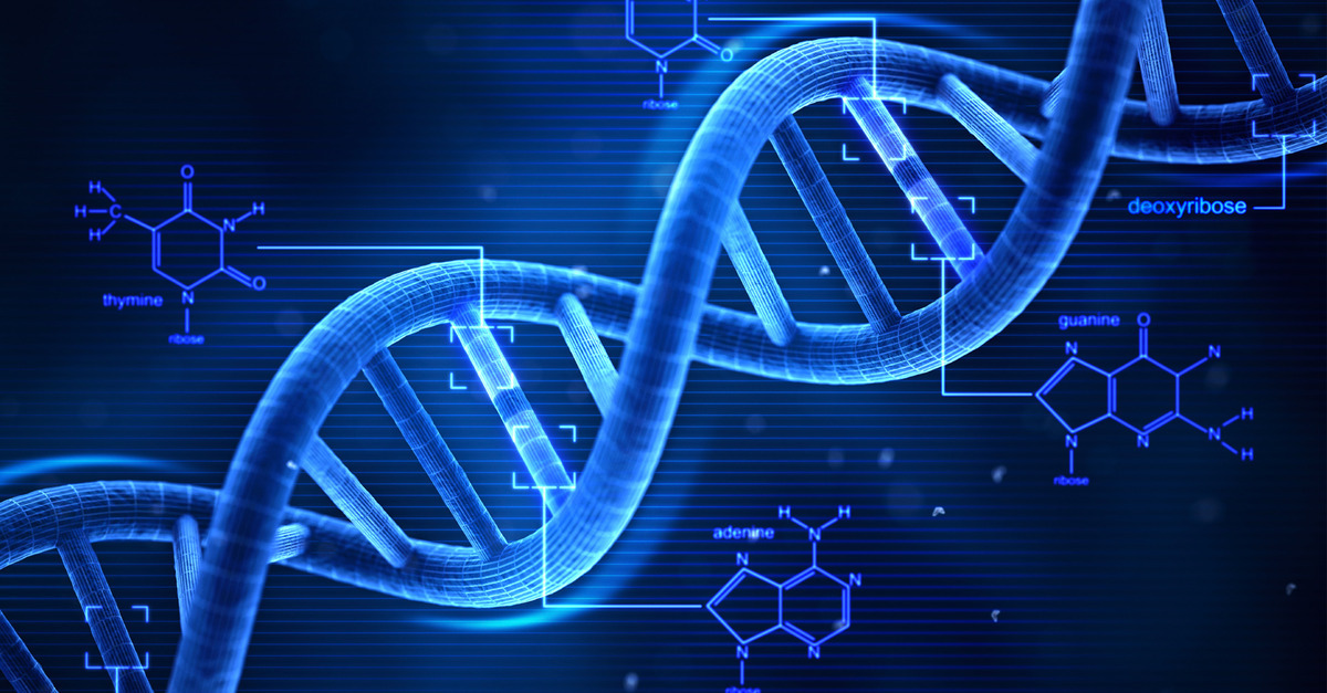 gene expression and genetic engineering global events usa