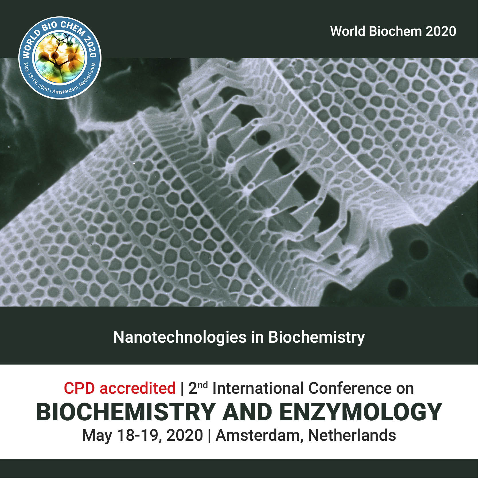 NANOTECHNOLOGIES IN BIOCHEMISTRY Photo