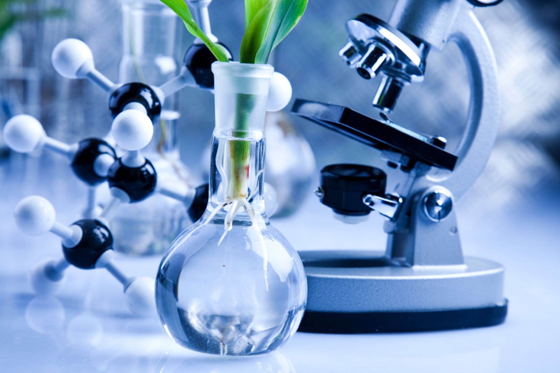 Plant and Agricultural Biotechnology Photo