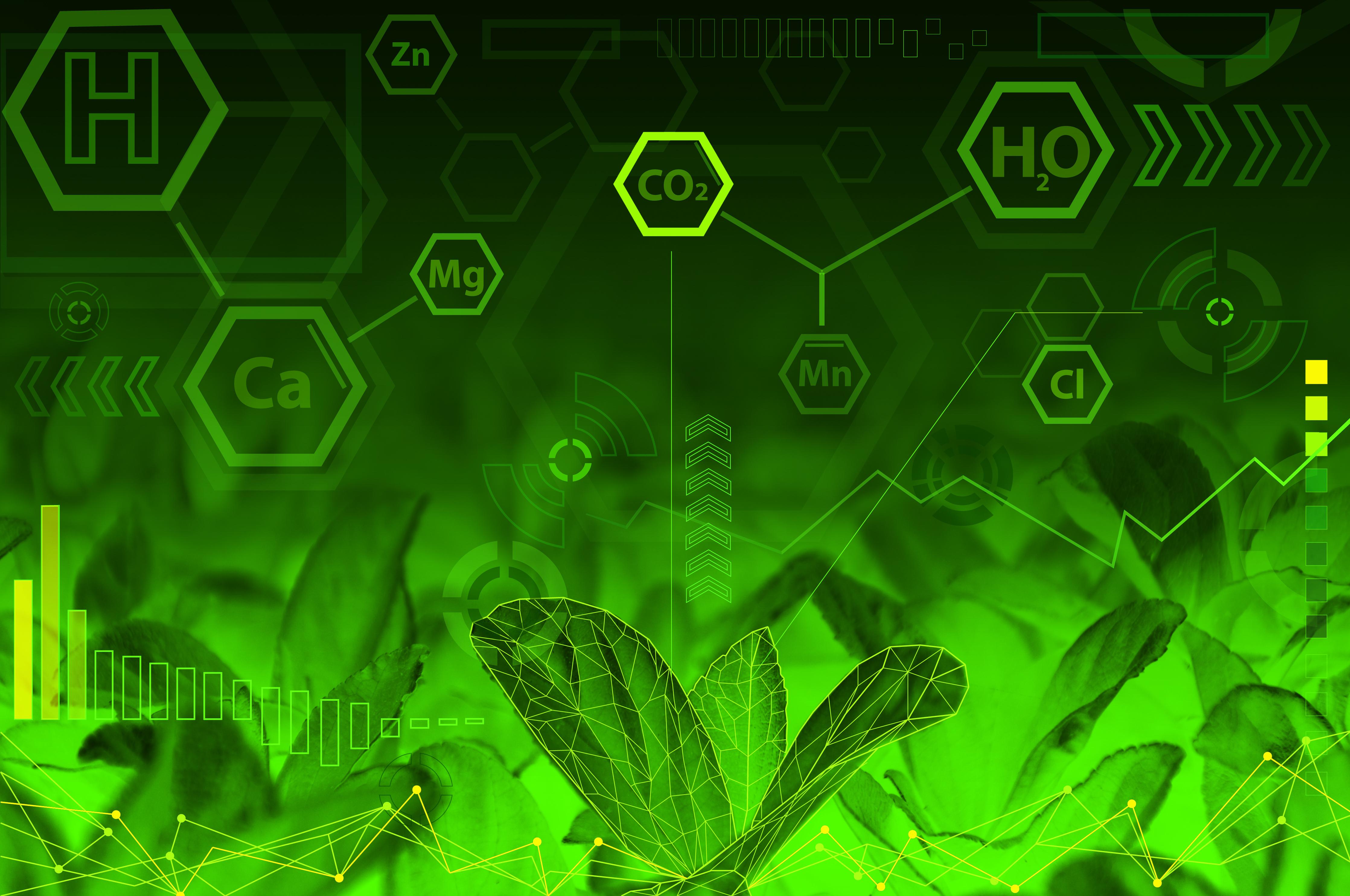 Green Chemistry Photo