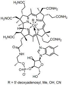 Elementary concepts of Organic Chemistry Photo