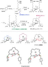 Molecular design and Synthesis Photo