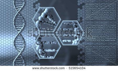 Molecular Diagnostics Photo