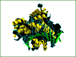 Enzyme biotechnology Photo