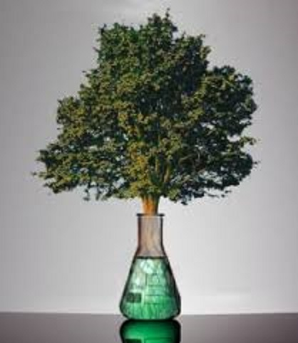 Green Chemistry in Agrochemicals Photo