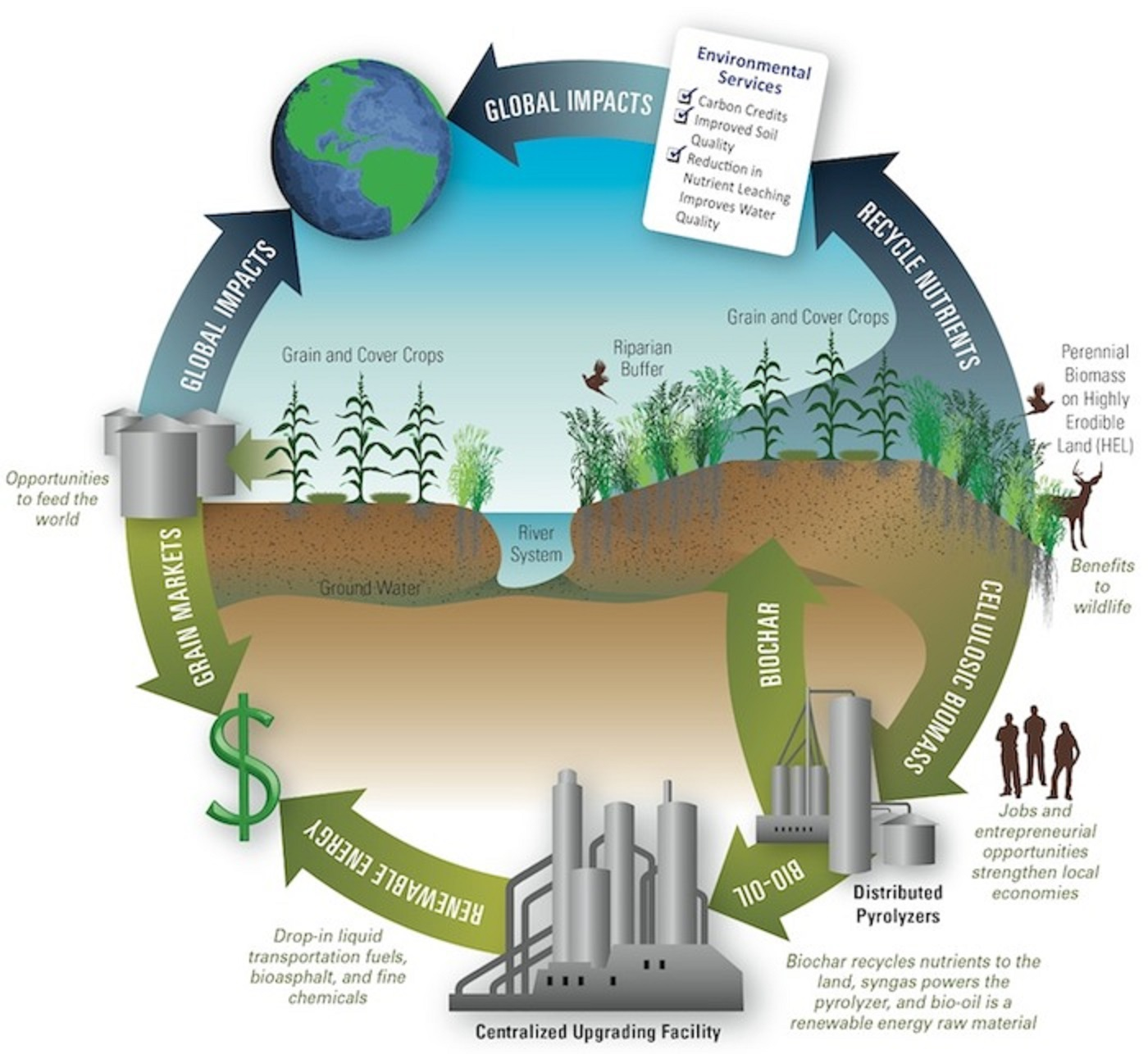 Green Energy & Its Impact on Environment Photo