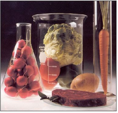 Food Chemistry Photo