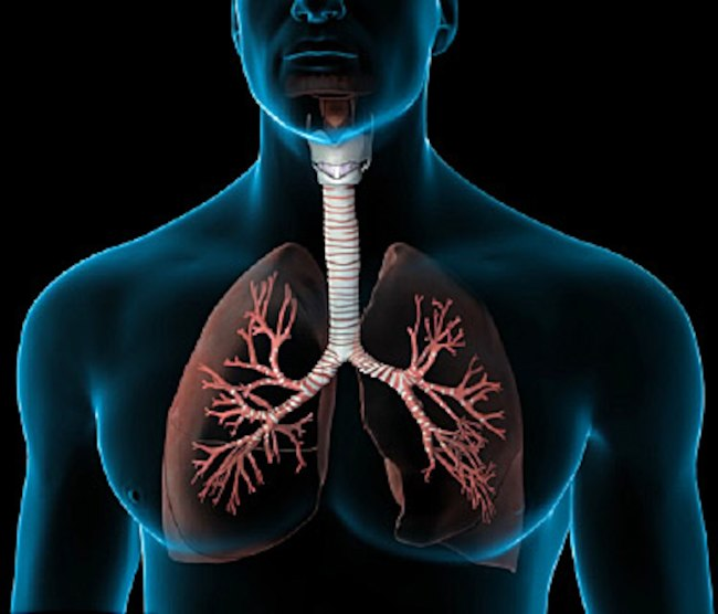Therapies and treatment of Pulmonary Diseases Photo
