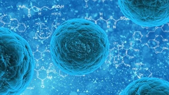 Biomedicine-Research Scope and Prospect Photo