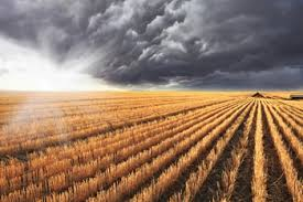 Global Warming and Agriculture Photo