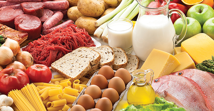 Nutrition and Food safety Photo
