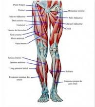 Autonomic Neurology Photo