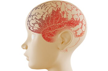 Paediatric Neurology Photo