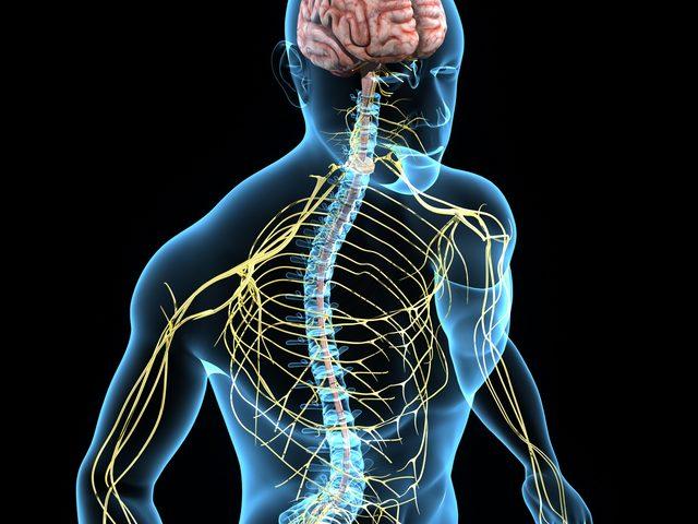 Neurological Nursing Photo