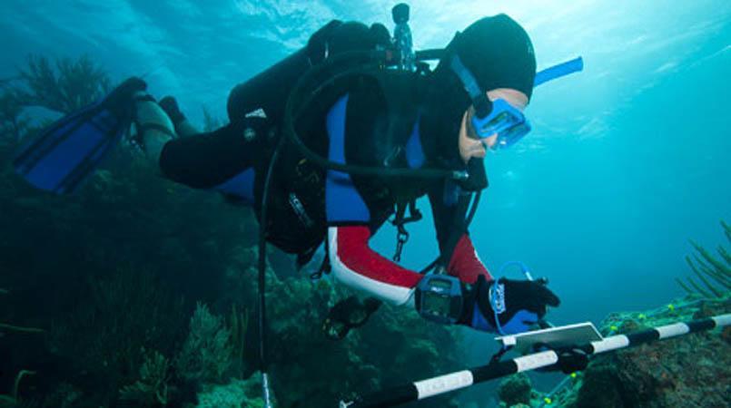 Marine Science and Marine drug Photo