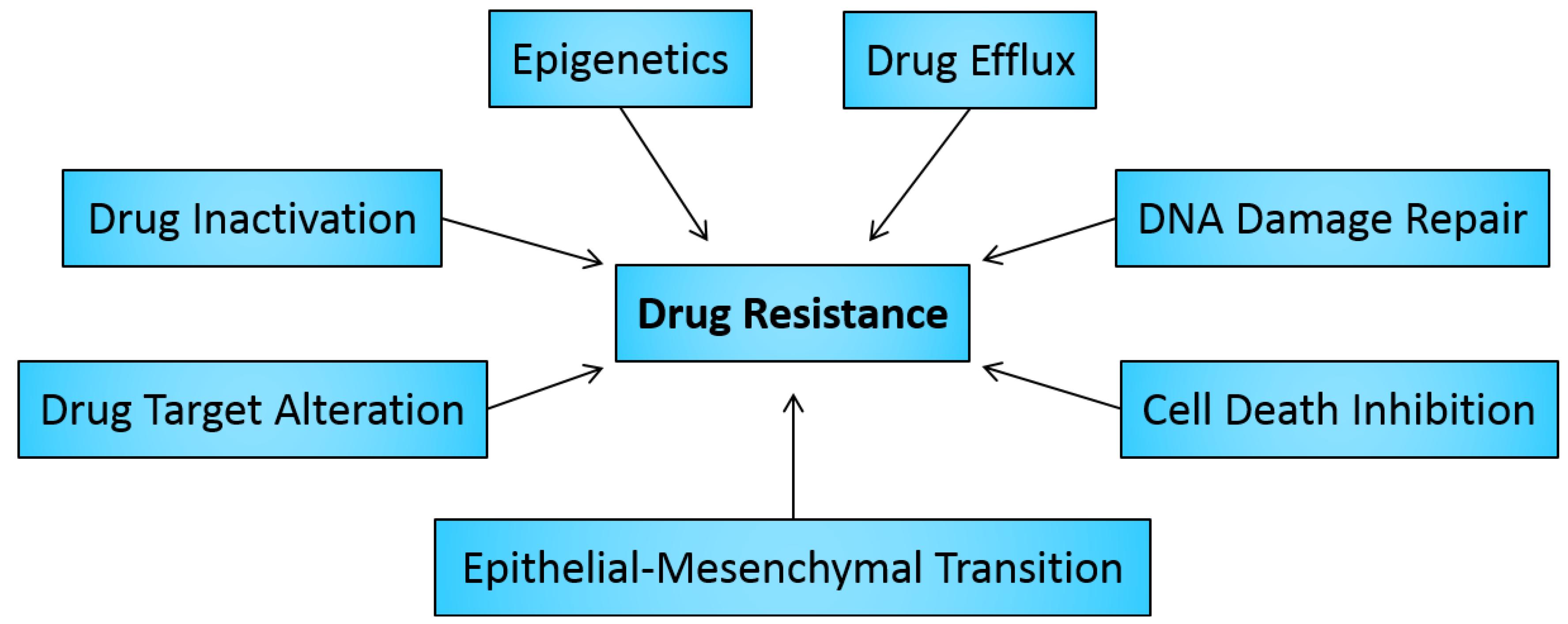 Metastasis and Drug Resistance Photo
