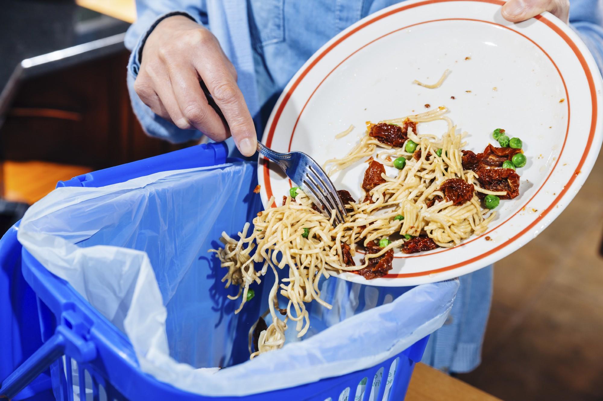 Food Waste Management Photo