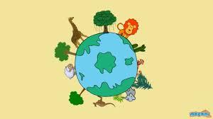 Biodiversity on Earth Photo
