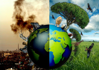 Earth Pollution & Treatment Photo