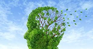 Alzheimer & Dementia-Sheding Spotlight Photo