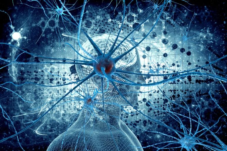 Neurotoxicology Photo