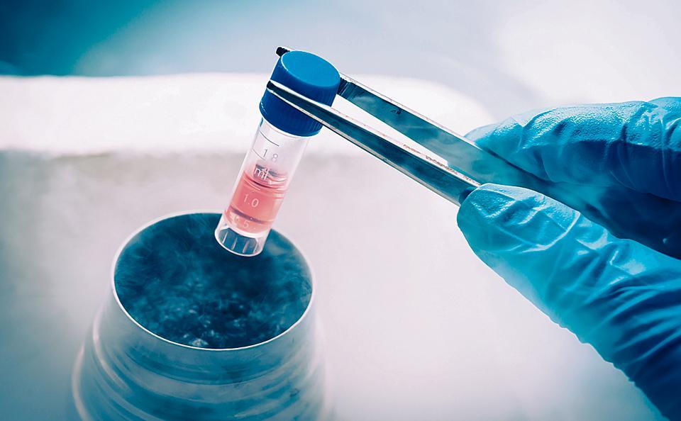 Stem Cell Bio Banking & Tissue Preservation Photo