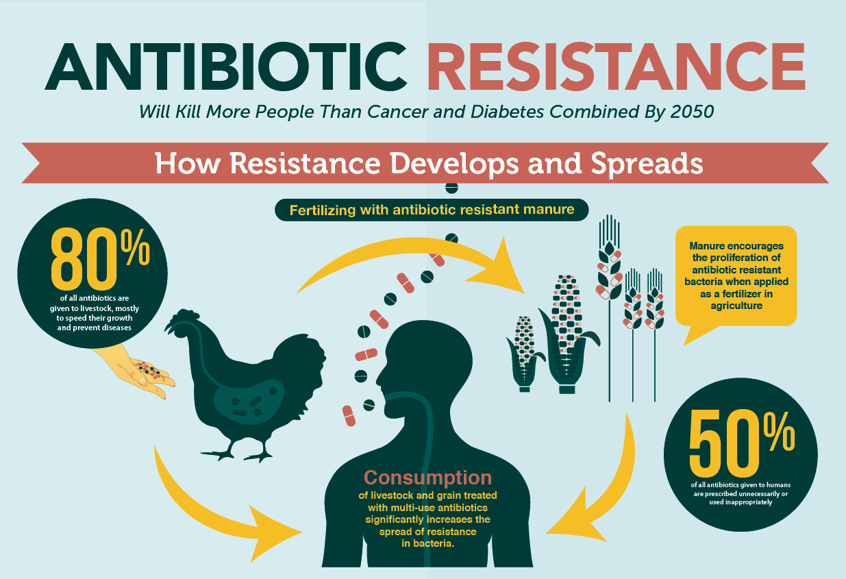 Resistances Development by Pathogens Photo