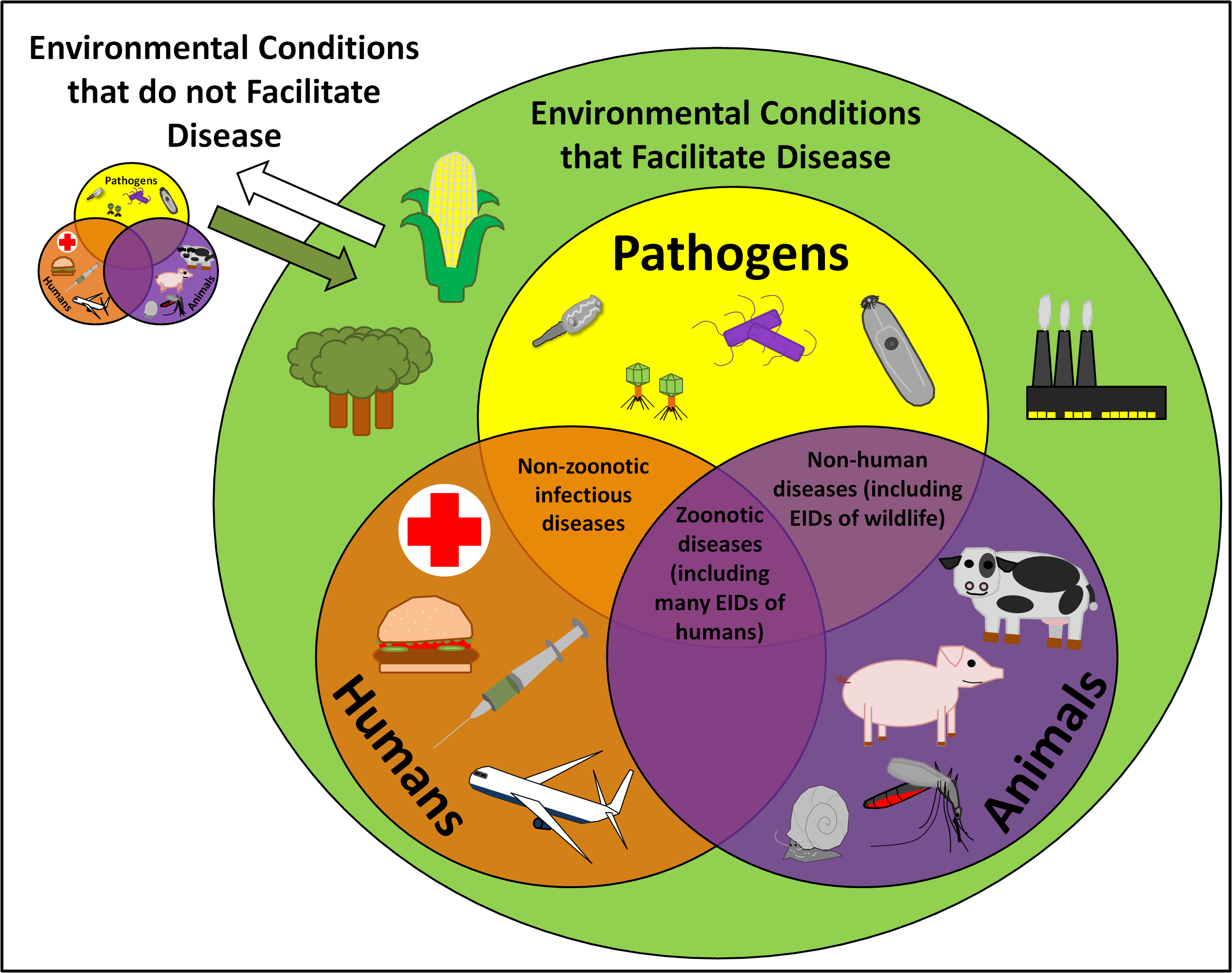 Emerging and Re-Emerging Infections Photo