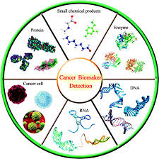 Cancer Biomarkers Photo