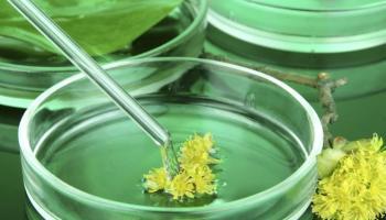 Biocatalysis and biotransformation Photo