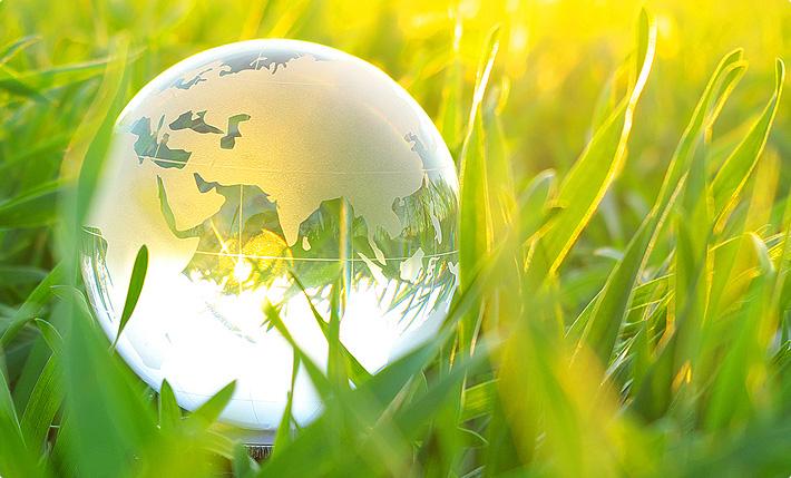 Bioeconomy and Circular economy Photo