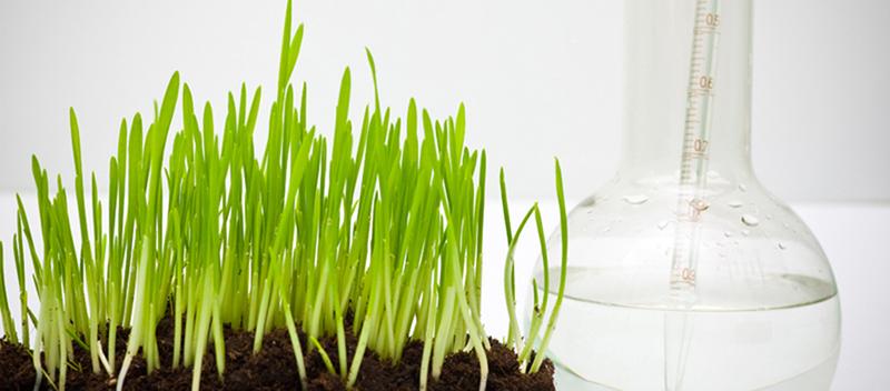 Agri-food technology Photo