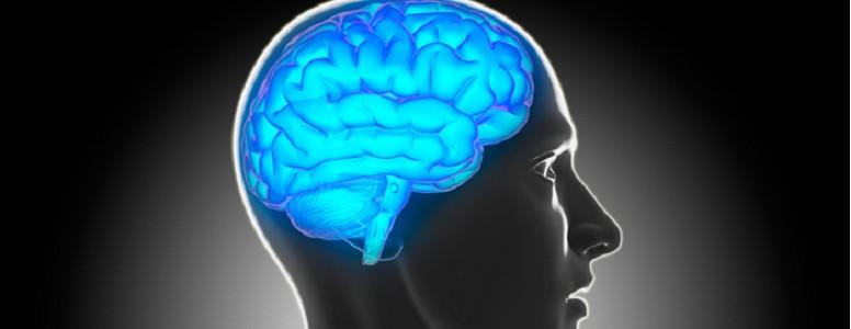 Geriatric Neurology Photo