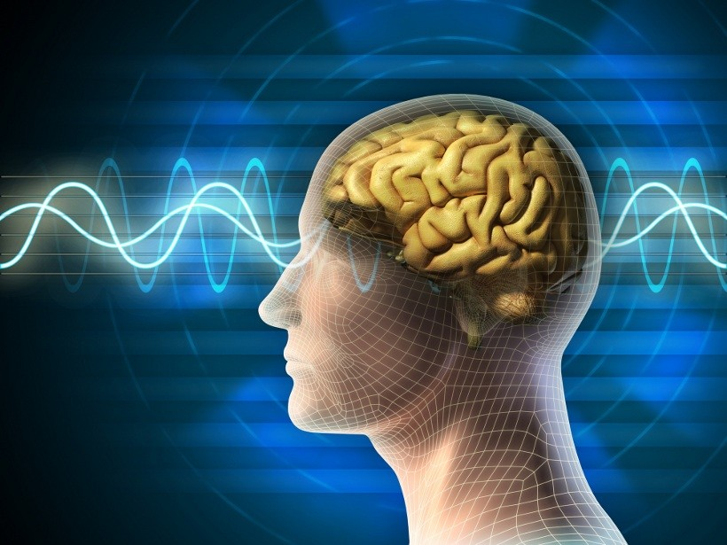 Neurodegenerative Disorder Photo