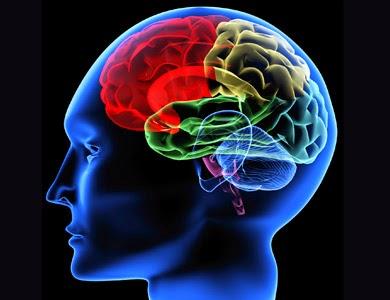 Neurological Disorders Photo